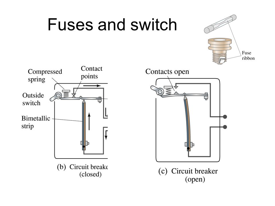 Fuses and switch