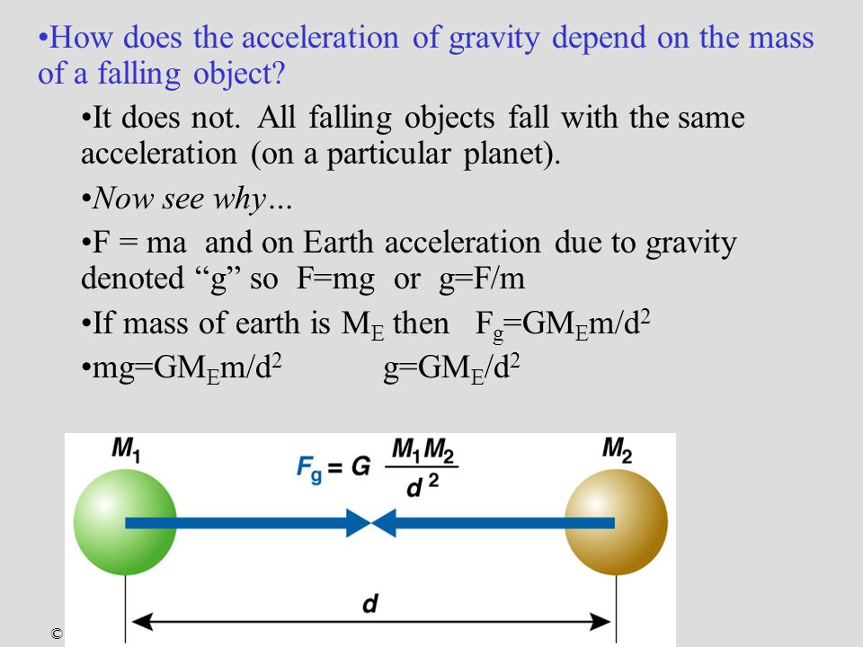 © 2004 Pearson Education Inc., publishing as Addison-Wesley How does the acceleration of gravity depend on the mass of a falling object.