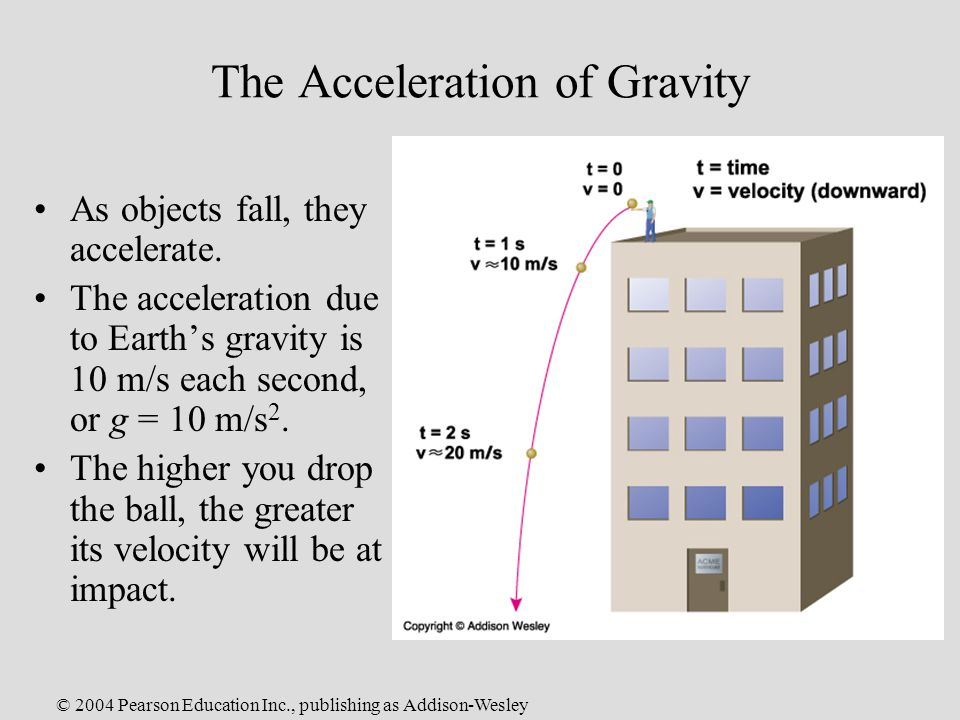 © 2004 Pearson Education Inc., publishing as Addison-Wesley The Acceleration of Gravity As objects fall, they accelerate.