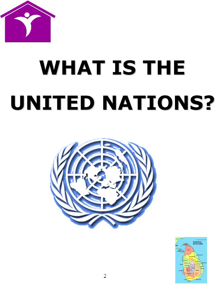 2 WHAT IS THE UNITED NATIONS