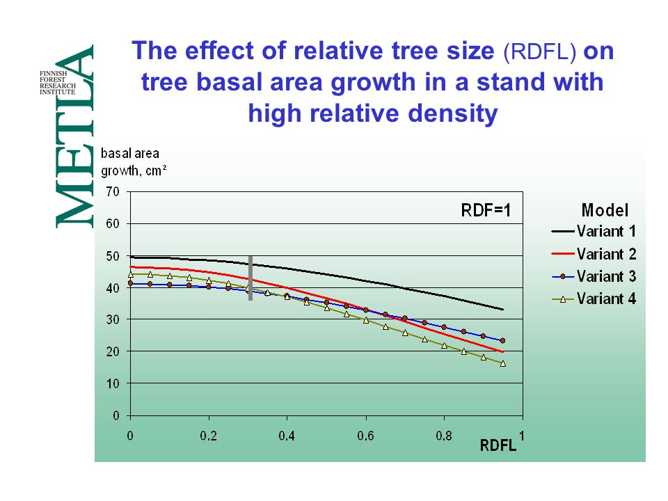 The effect of relative tree size (RDFL) on tree basal area growth in a stand with high relative density