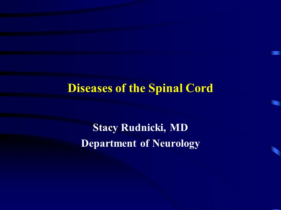 Diseases of the Spinal Cord Stacy Rudnicki, MD Department of Neurology
