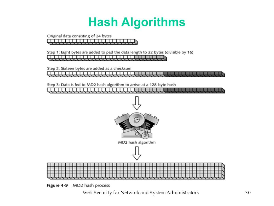 Web Security for Network and System Administrators30 Hash Algorithms