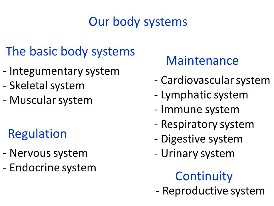 Welcome to BIOL 252 Human Anatomy and Physiology - ppt download