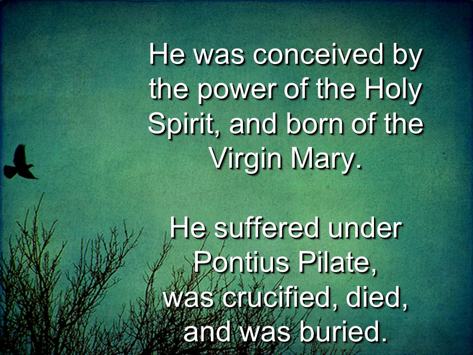 He was conceived by the power of the Holy Spirit, and born of the Virgin Mary.