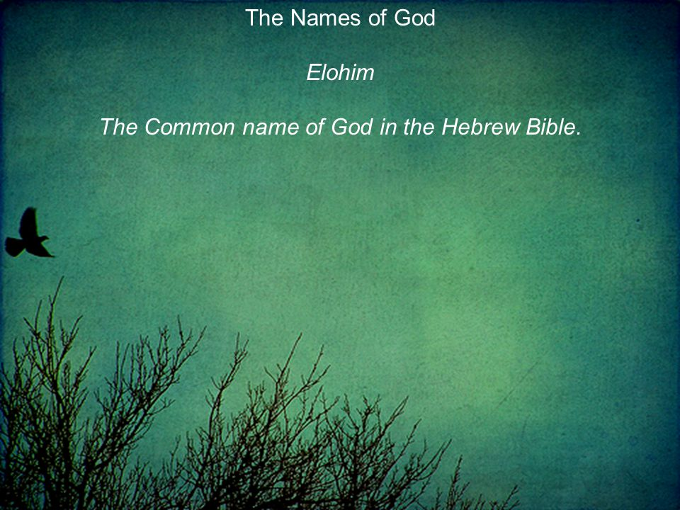 Elohim The Common name of God in the Hebrew Bible.