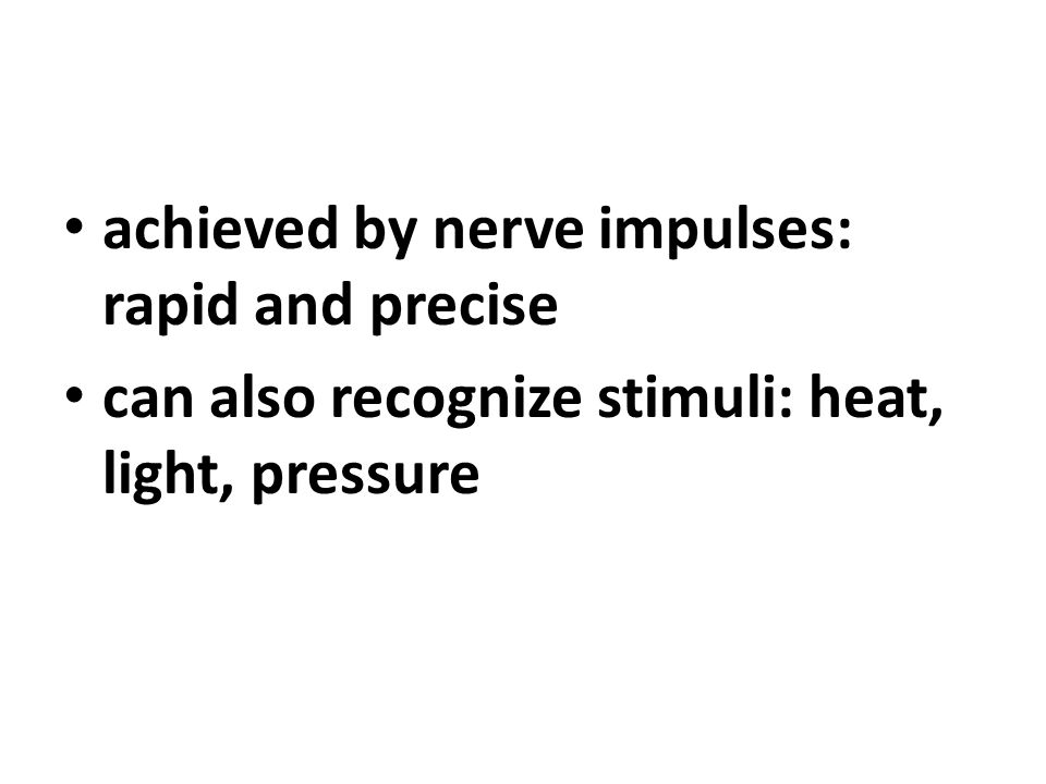 achieved by nerve impulses: rapid and precise can also recognize stimuli: heat, light, pressure