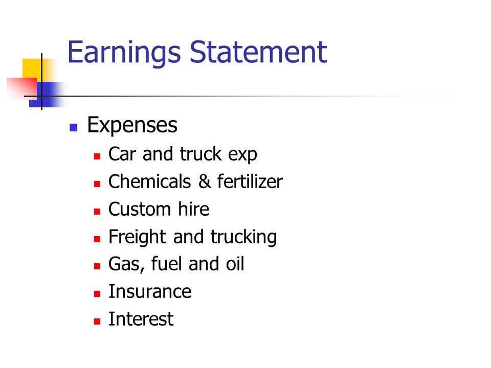 Earnings Statement Expenses Car and truck exp Chemicals & fertilizer Custom hire Freight and trucking Gas, fuel and oil Insurance Interest