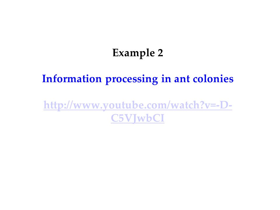 Example 2 Information processing in ant colonies   v=-D- C5VJwbCI   v=-D- C5VJwbCI