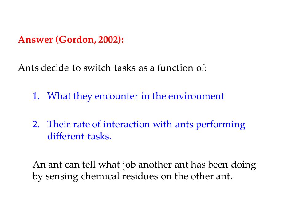 Answer (Gordon, 2002): Ants decide to switch tasks as a function of: 1.What they encounter in the environment 2.Their rate of interaction with ants performing different tasks.
