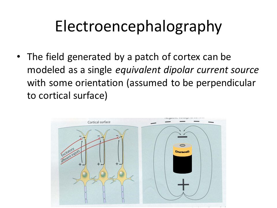 Electroencephalography The field generated by a patch of cortex can be modeled as a single equivalent dipolar current source with some orientation (assumed to be perpendicular to cortical surface)