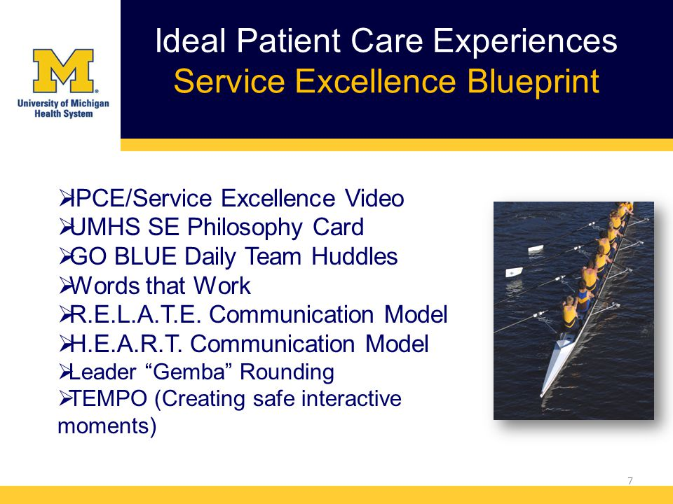 Ideal Patient Care Experiences Service Excellence Blueprint 7  IPCE/Service Excellence Video  UMHS SE Philosophy Card  GO BLUE Daily Team Huddles  Words that Work  R.E.L.A.T.E.