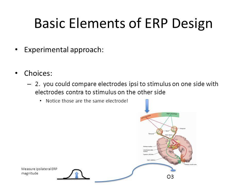 Basic Elements of ERP Design Experimental approach: Choices: – 2.