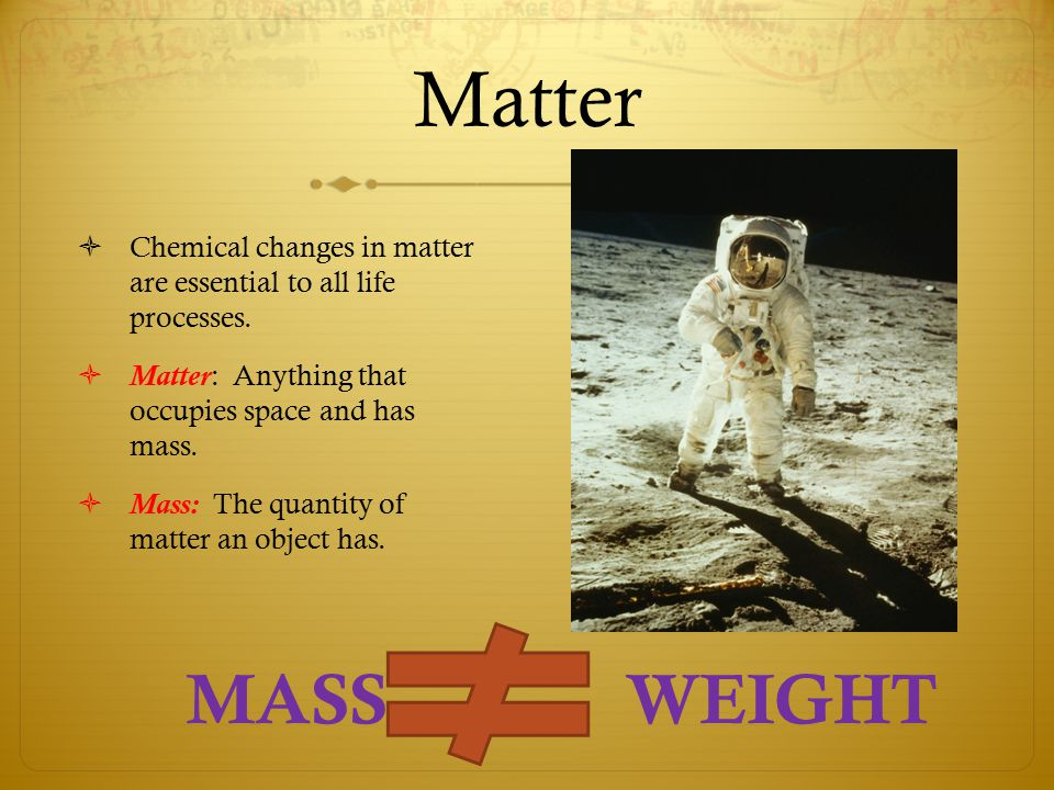 Matter  Chemical changes in matter are essential to all life processes.