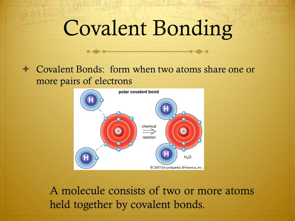 Covalent Bonding  Covalent Bonds: form when two atoms share one or more pairs of electrons A molecule consists of two or more atoms held together by covalent bonds.