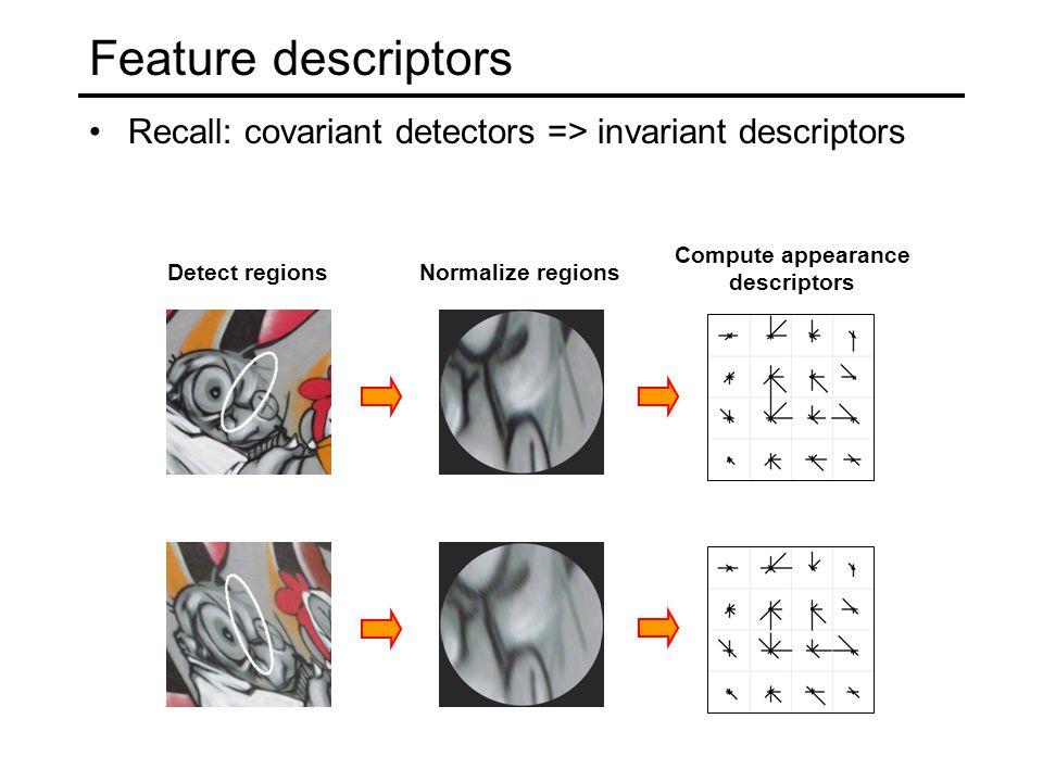 Feature descriptors Recall: covariant detectors => invariant descriptors Detect regionsNormalize regions Compute appearance descriptors