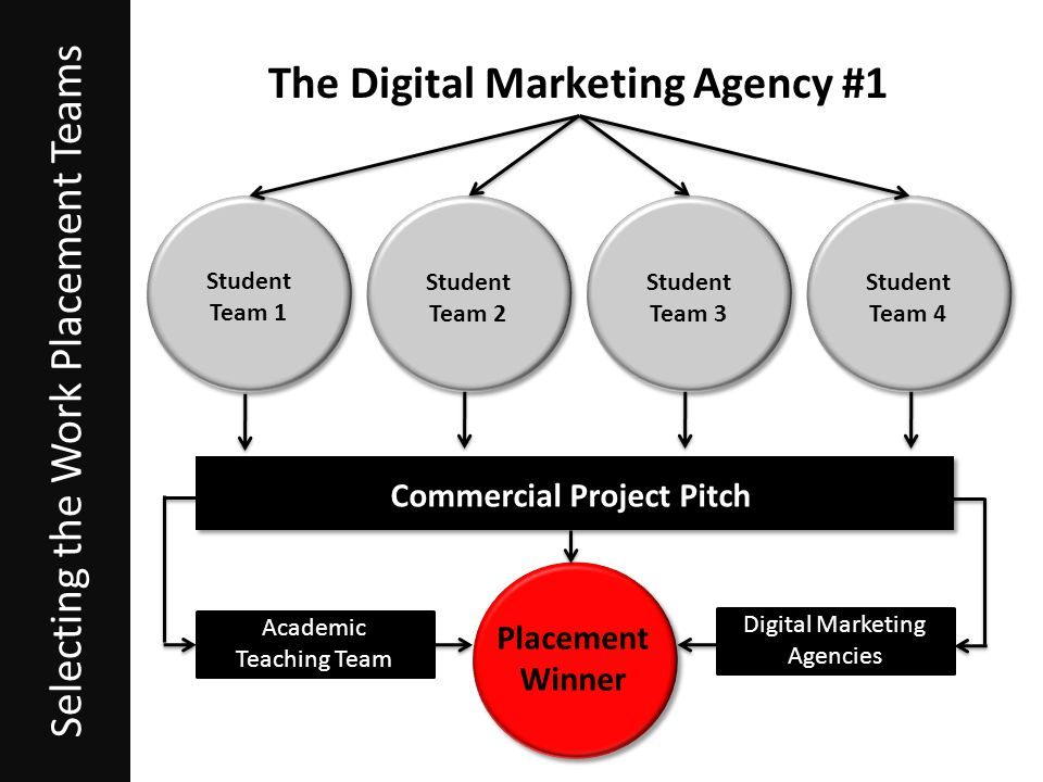 The Digital Marketing Agency #1 Placement Winner Selecting the Work Placement Teams Student Team 1 Student Team 2 Student Team 3 Student Team 4 Commercial Project Pitch Academic Teaching Team Digital Marketing Agencies