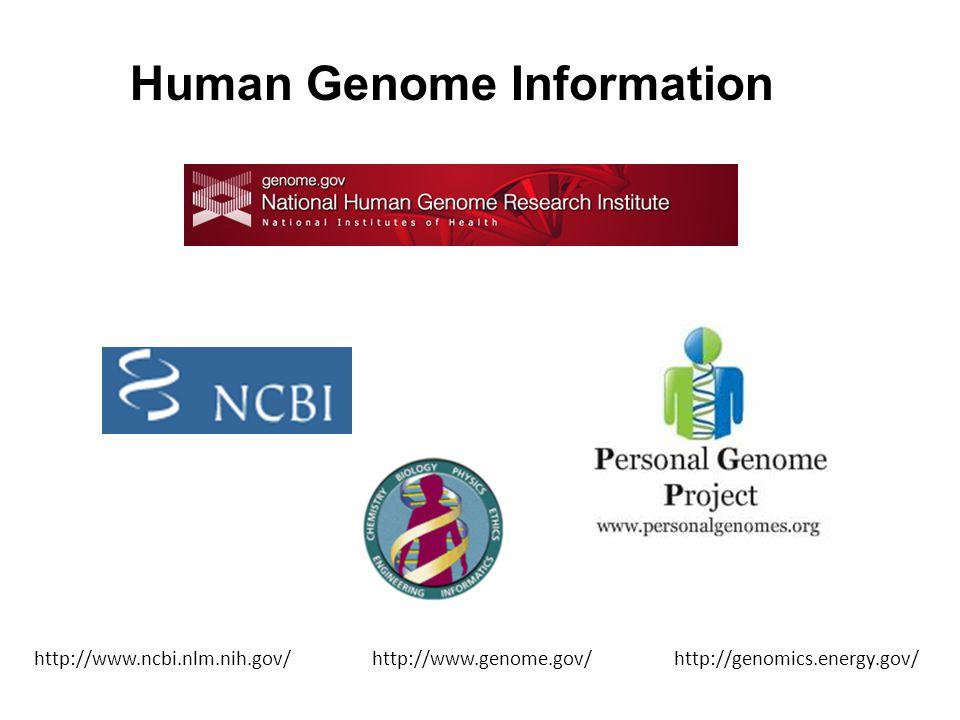 Human Genome Information http://www.ncbi.nlm.nih.gov/ http://www.genome.gov/ http://genomics.energy.gov/