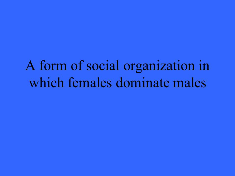 A form of social organization in which females dominate males