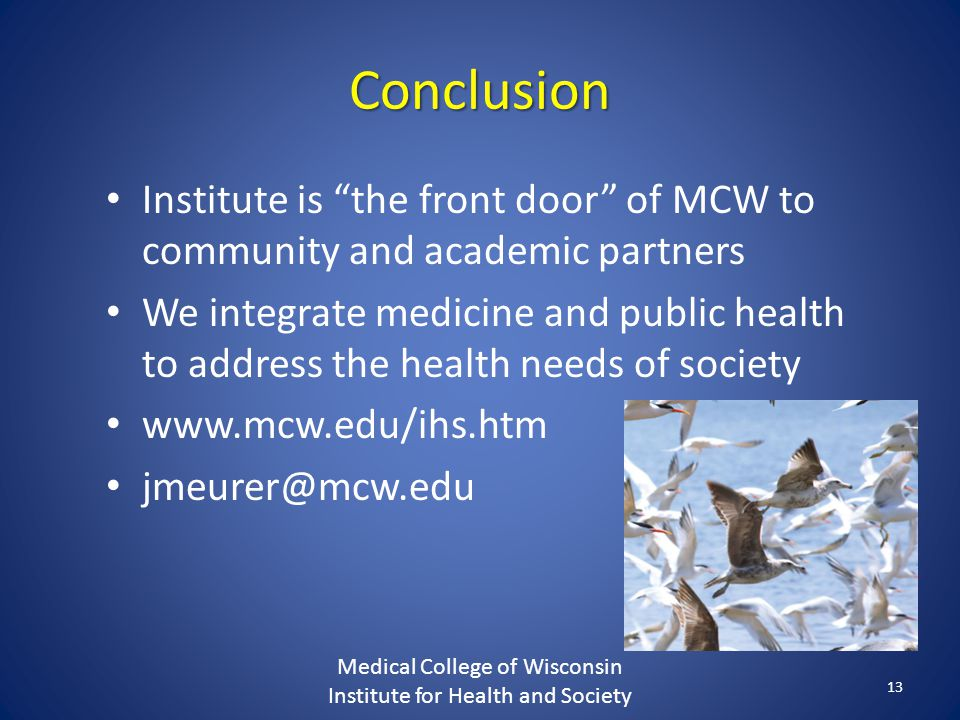 Conclusion Institute is the front door of MCW to community and academic partners We integrate medicine and public health to address the health needs of society   Medical College of Wisconsin Institute for Health and Society 13