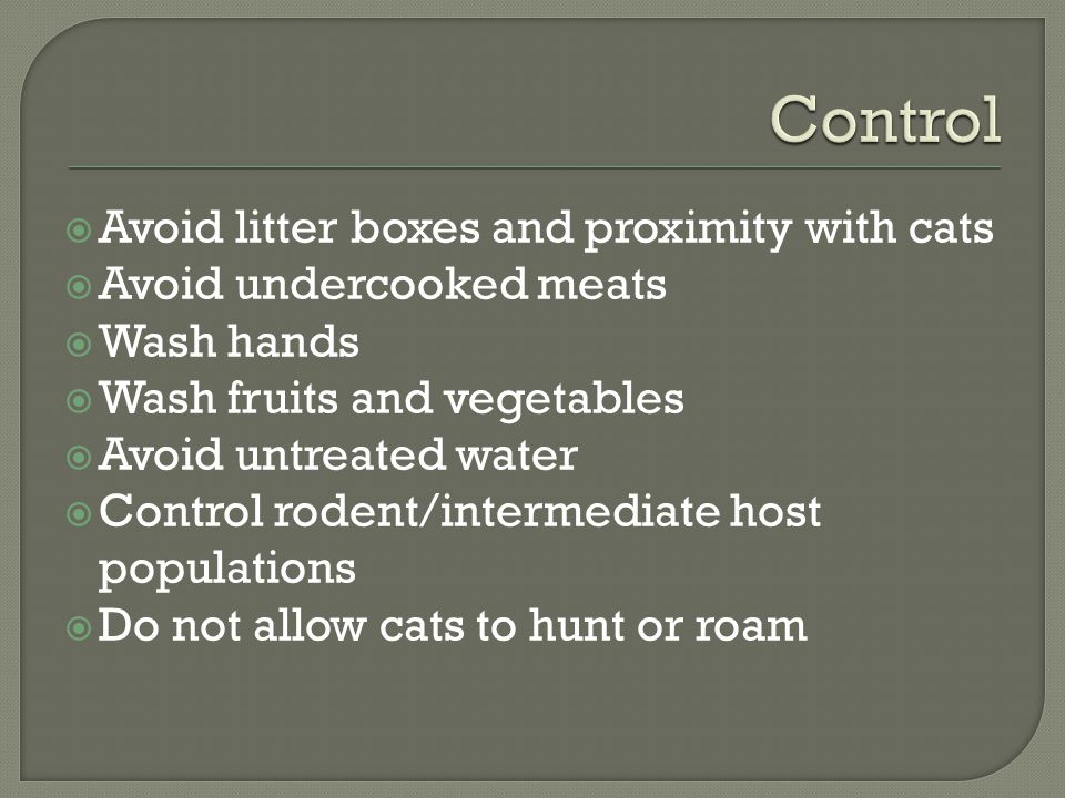  Avoid litter boxes and proximity with cats  Avoid undercooked meats  Wash hands  Wash fruits and vegetables  Avoid untreated water  Control rodent/intermediate host populations  Do not allow cats to hunt or roam