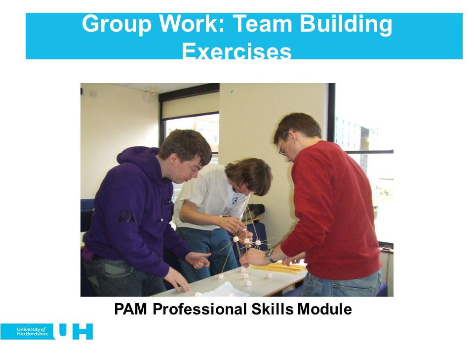 Group Work: Team Building Exercises PAM Professional Skills Module