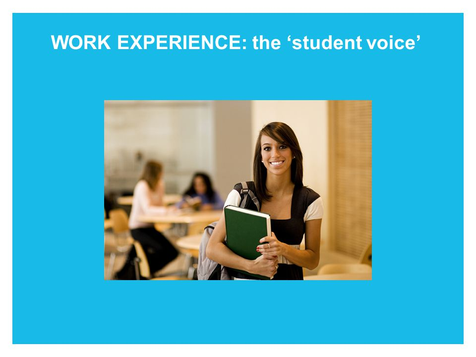 What can you do WORK EXPERIENCE: the 'student voice'