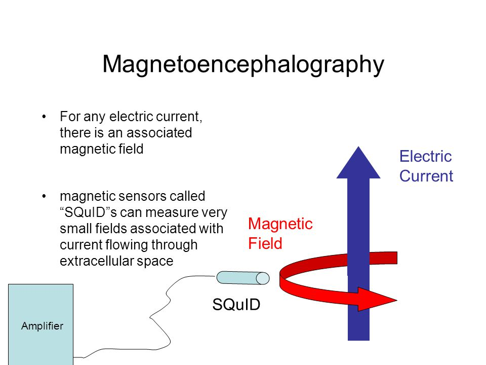 Magnetoencephalography For any electric current, there is an associated magnetic field magnetic sensors called SQuID s can measure very small fields associated with current flowing through extracellular space Magnetic Field Electric Current SQuID Amplifier