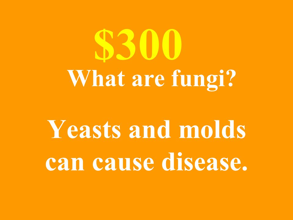 Yeasts and molds can cause disease. $300 What are fungi