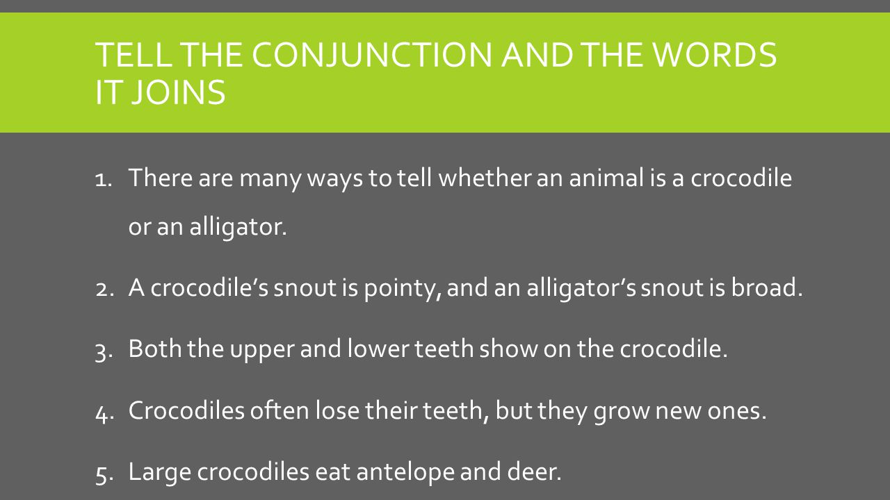 TELL THE CONJUNCTION AND THE WORDS IT JOINS 1.There are many ways to tell whether an animal is a crocodile or an alligator.