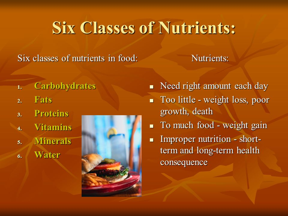 6 classes of nutrients