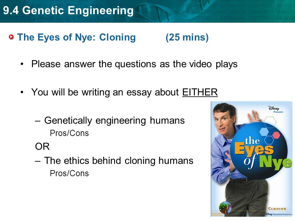 genetical engineering is wrong essay Genetic engineering ethics essay genetic engineering is the integration between biological and engineering applications that the population does not recognize up to this day this is because it is a profession that does not show their process in the public due to the issue of morality and ethical jurisprudence.