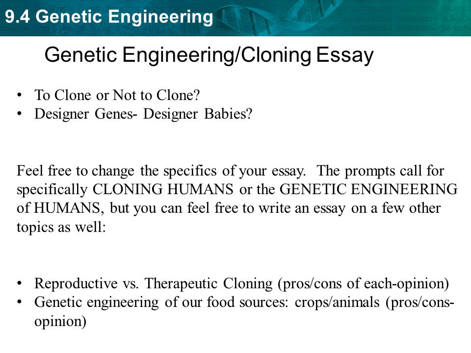 argumentative essay therapeutic cloning The tools you need to write a quality essay or term paper essays related to cloning argument 1 except for research in therapeutic cloning.