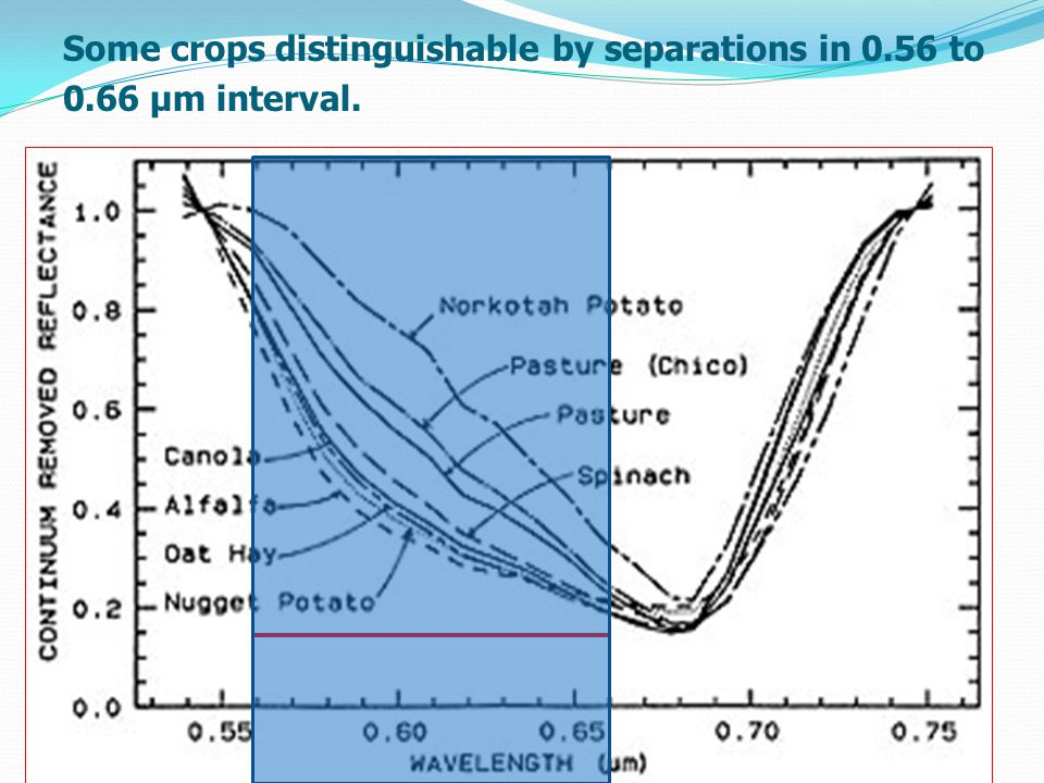 Some crops distinguishable by separations in 0.56 to 0.66 µm interval.