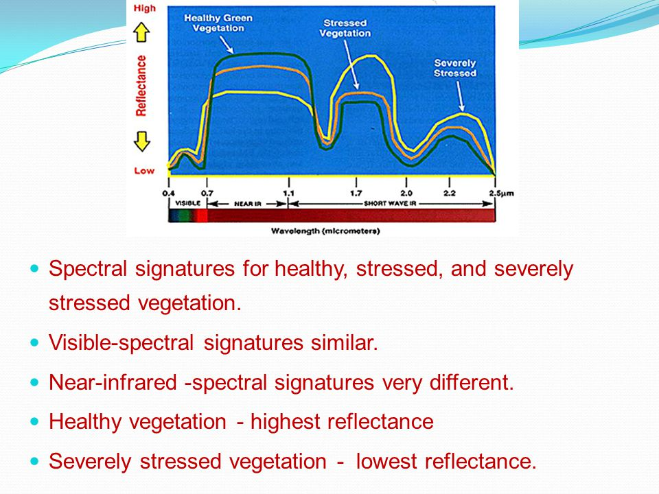 Spectral signatures for healthy, stressed, and severely stressed vegetation.