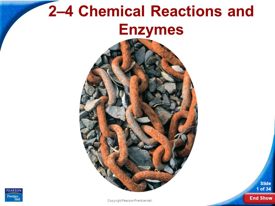 End Show Slide 1 of 34 Copyright Pearson Prentice Hall 2–4 Chemical Reactions and Enzymes