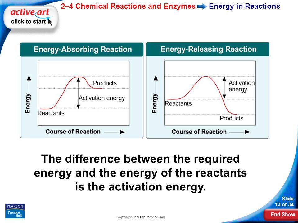 End Show 2–4 Chemical Reactions and Enzymes Slide 13 of 34 Copyright Pearson Prentice Hall Energy in Reactions The difference between the required energy and the energy of the reactants is the activation energy.
