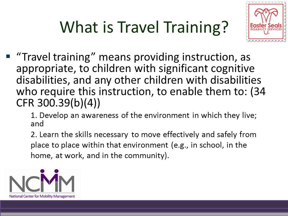 What is Travel Training.