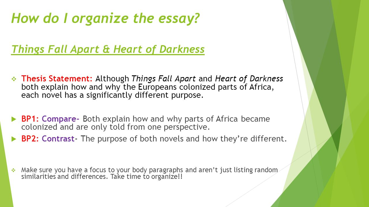 Chinua achebe heart of darkness essay