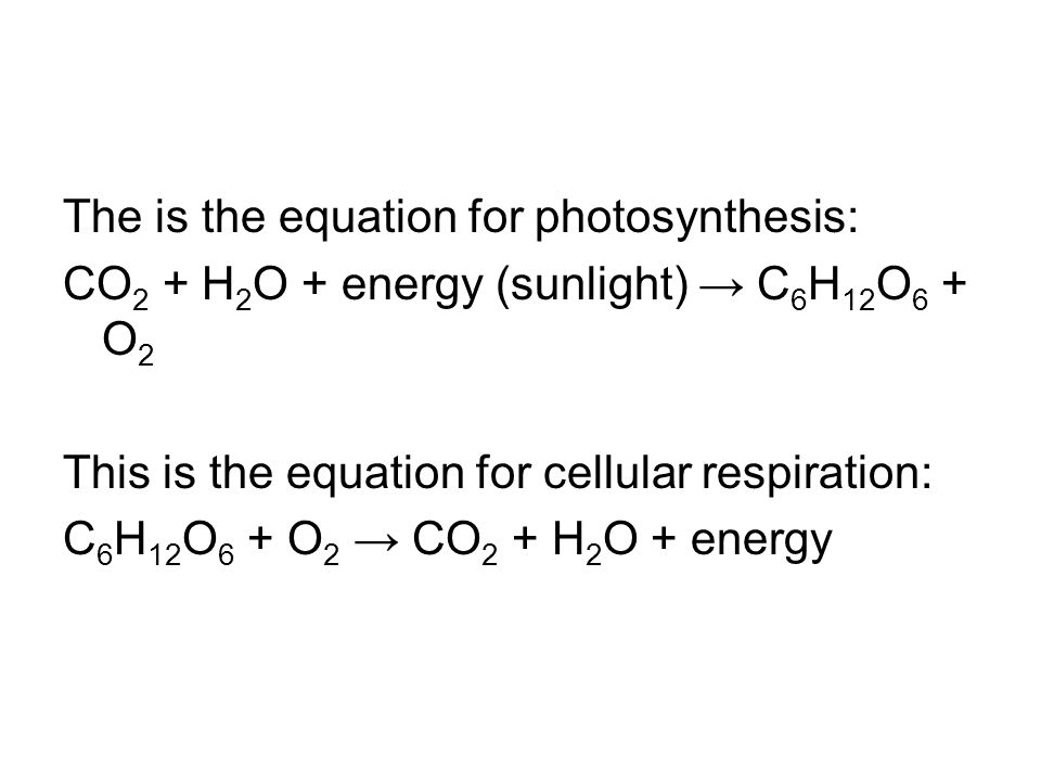 The is the equation for photosynthesis: CO 2 + H 2 O + energy (sunlight) → C 6 H 12 O 6 + O 2 This is the equation for cellular respiration: C 6 H 12 O 6 + O 2 → CO 2 + H 2 O + energy