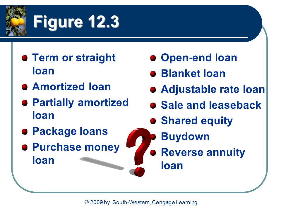 © 2009 by South-Western, Cengage Learning Figure 12.3 Term or straight loan Amortized loan Partially amortized loan Package loans Purchase money loan Open-end loan Blanket loan Adjustable rate loan Sale and leaseback Shared equity Buydown Reverse annuity loan