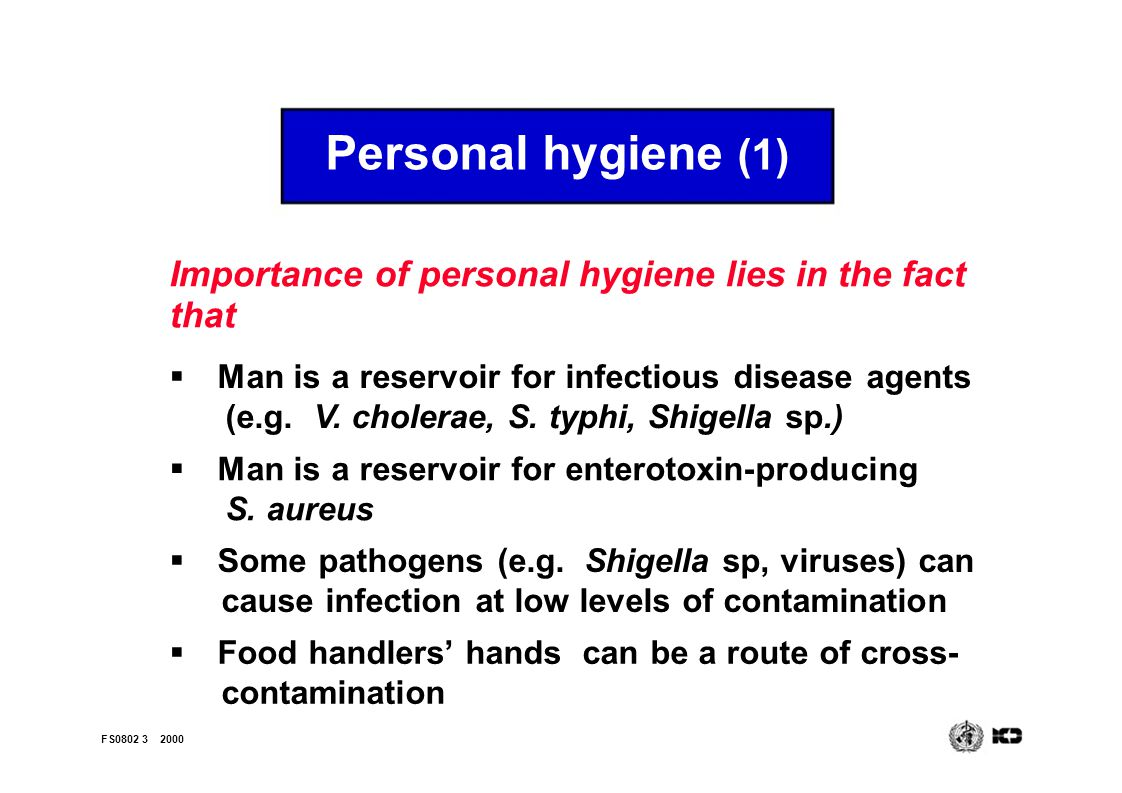 Good hygienic practices applied to food service establishments FS ...