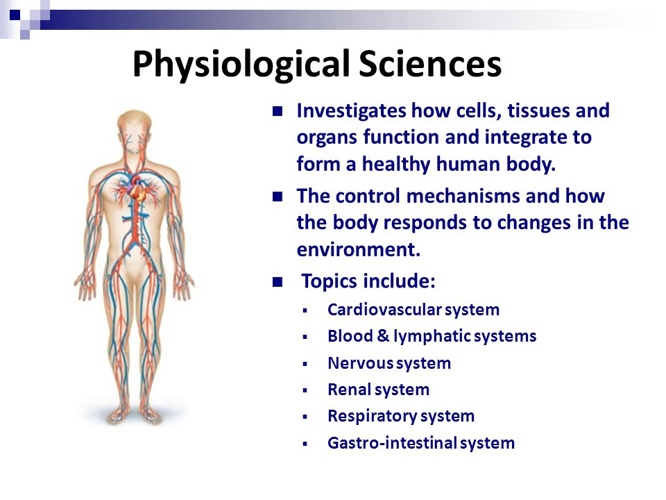 Physiological Sciences Investigates how cells, tissues and organs function and integrate to form a healthy human body.