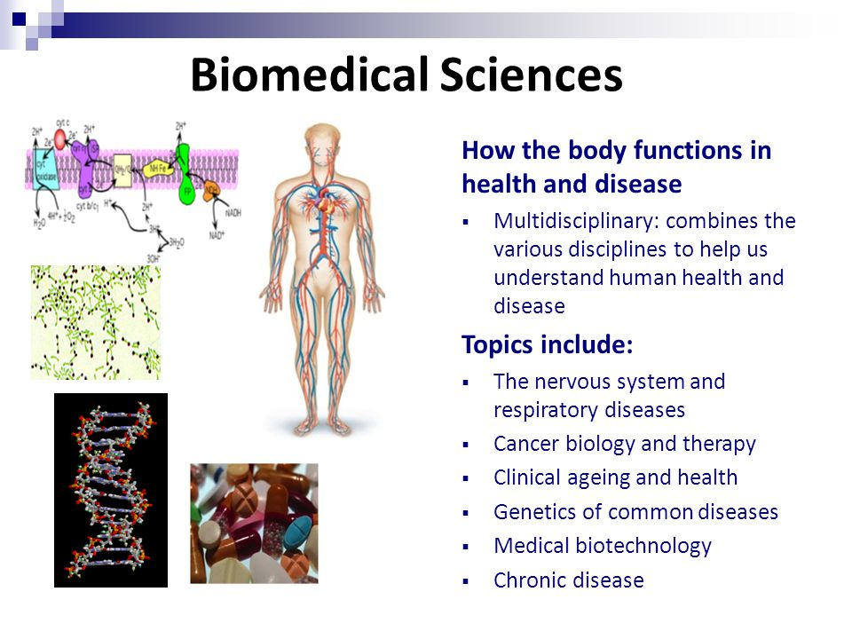 Biomedical Sciences How the body functions in health and disease  Multidisciplinary: combines the various disciplines to help us understand human health and disease Topics include:  The nervous system and respiratory diseases  Cancer biology and therapy  Clinical ageing and health  Genetics of common diseases  Medical biotechnology  Chronic disease