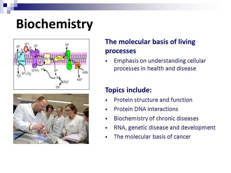 Biochemistry The molecular basis of living processes  Emphasis on understanding cellular processes in health and disease Topics include:  Protein structure and function  Protein DNA interactions  Biochemistry of chronic diseases  RNA, genetic disease and development  The molecular basis of cancer