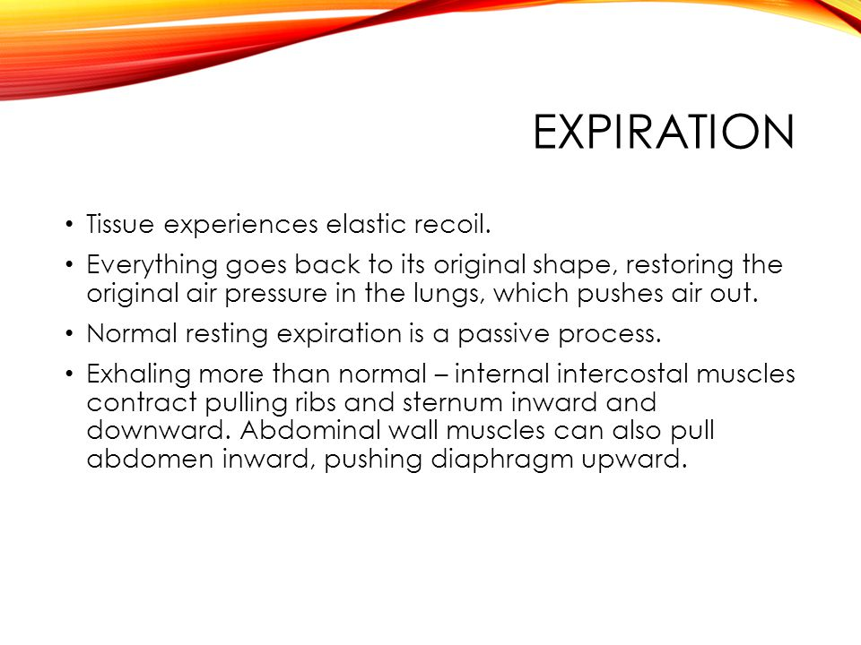 EXPIRATION Tissue experiences elastic recoil.