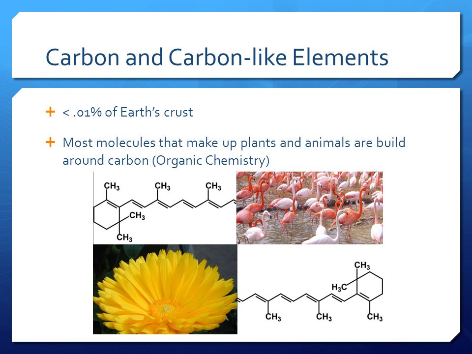 Carbon and Carbon-like Elements  <.01% of Earth's crust  Most molecules that make up plants and animals are build around carbon (Organic Chemistry)