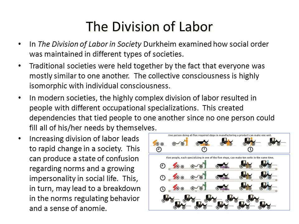 durkheim and division of labour Émile durkheim, the division of labor in as the accumulation of capital must have preceded the division of labour, so its subsequent division can only be.