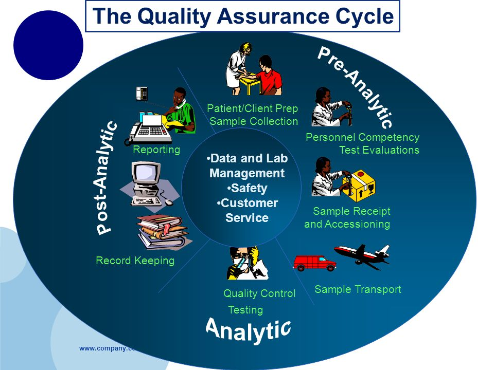 The Quality Assurance Cycle Data and Lab Management Safety Customer Service Patient/Client Prep Sample Collection Sample Receipt and Accessioning Sample Transport Quality Control Record Keeping Reporting Personnel Competency Test Evaluations Testing 20