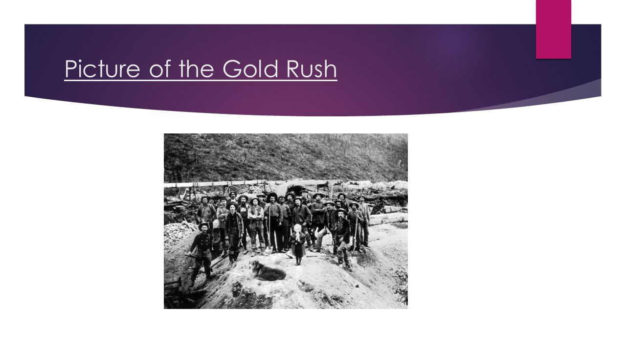 Picture of the Gold Rush